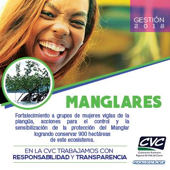 Manglares CVC