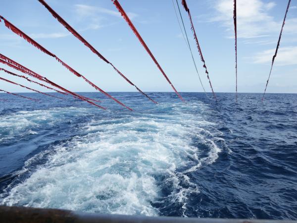 Ecopetrol finalizó operación de información sísmica en el Caribe
