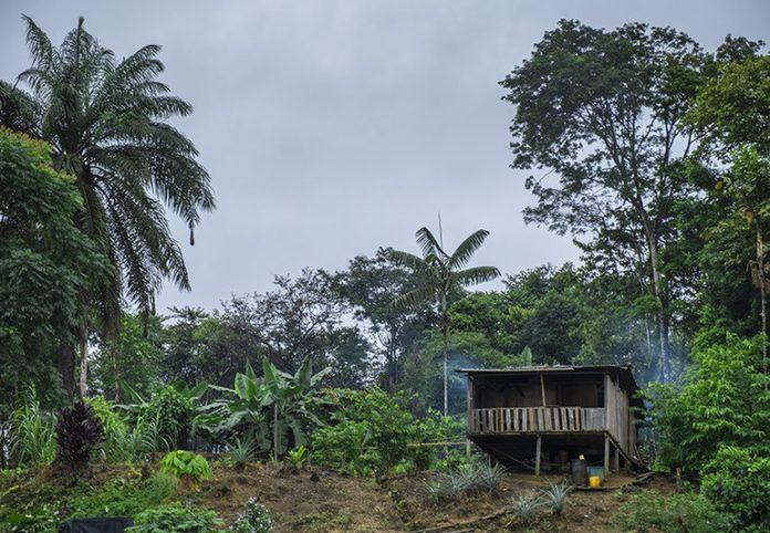 Desplazamiento y amenazas de grupos armados en zona rural de Buenaventura