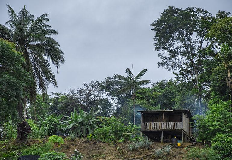 Buenaventura Rural