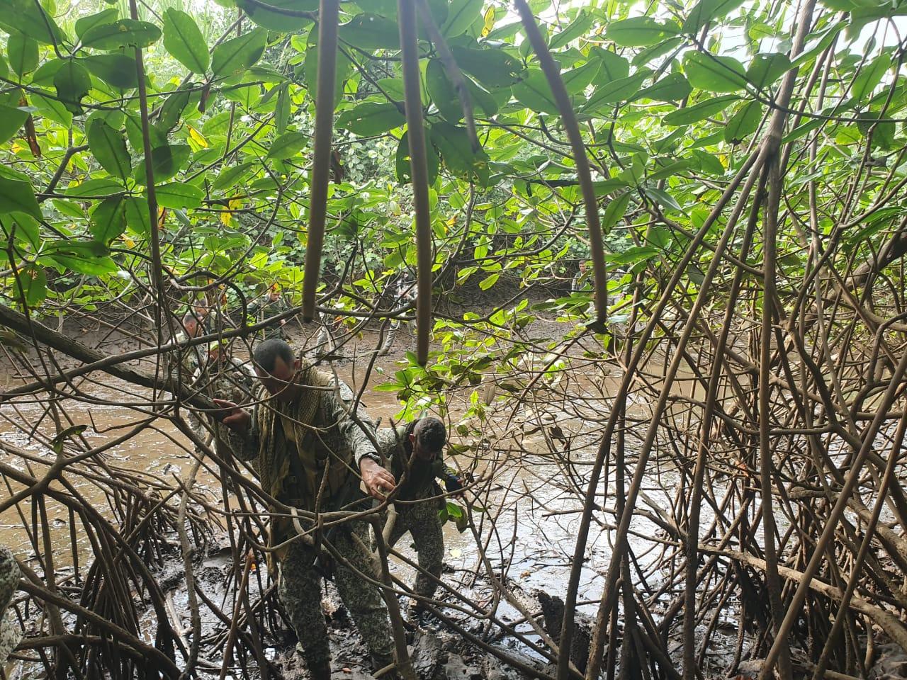 Decomiso alcaloide en Juradó , Chocó