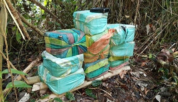 Ejército y Armada encontraron caleta con 250 kilos de marihuana de las disidencias en el Valle del Cauca