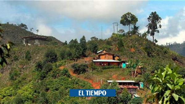 Ataque armado deja tres muertos en Buenos Aires, norte del Cauca - Cali - Colombia