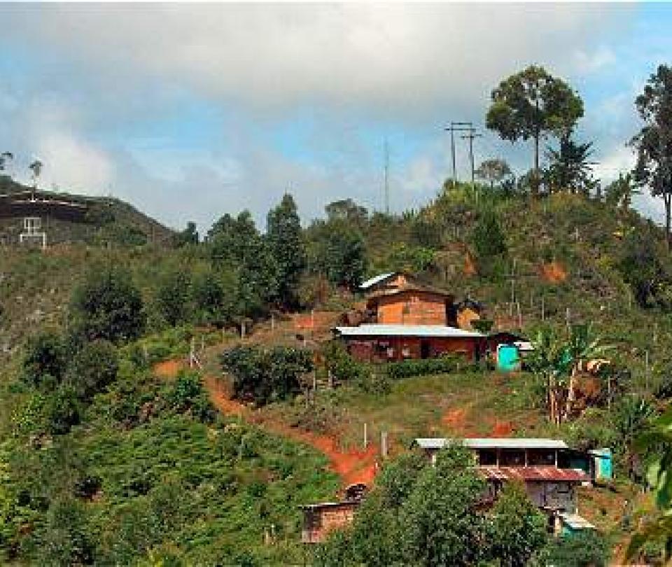 Otro líder asesinado en Cauca - Cali - Colombia