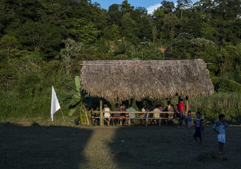Pichimaná Valle del Cauca