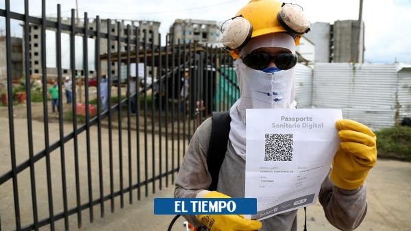 Tramitan 'pasaporte sanitario digital' en Cali - Cali - Colombia