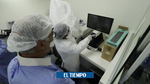 coronavirus: En laboratorio de la u de Cartagena ya hace pruebas de covid- 19 - Otras Ciudades - Colombia