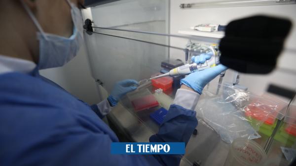 Coronavirus en Colombia: Gobierno anuncia llegada de robots para procesar pruebas de covid-19 - Salud