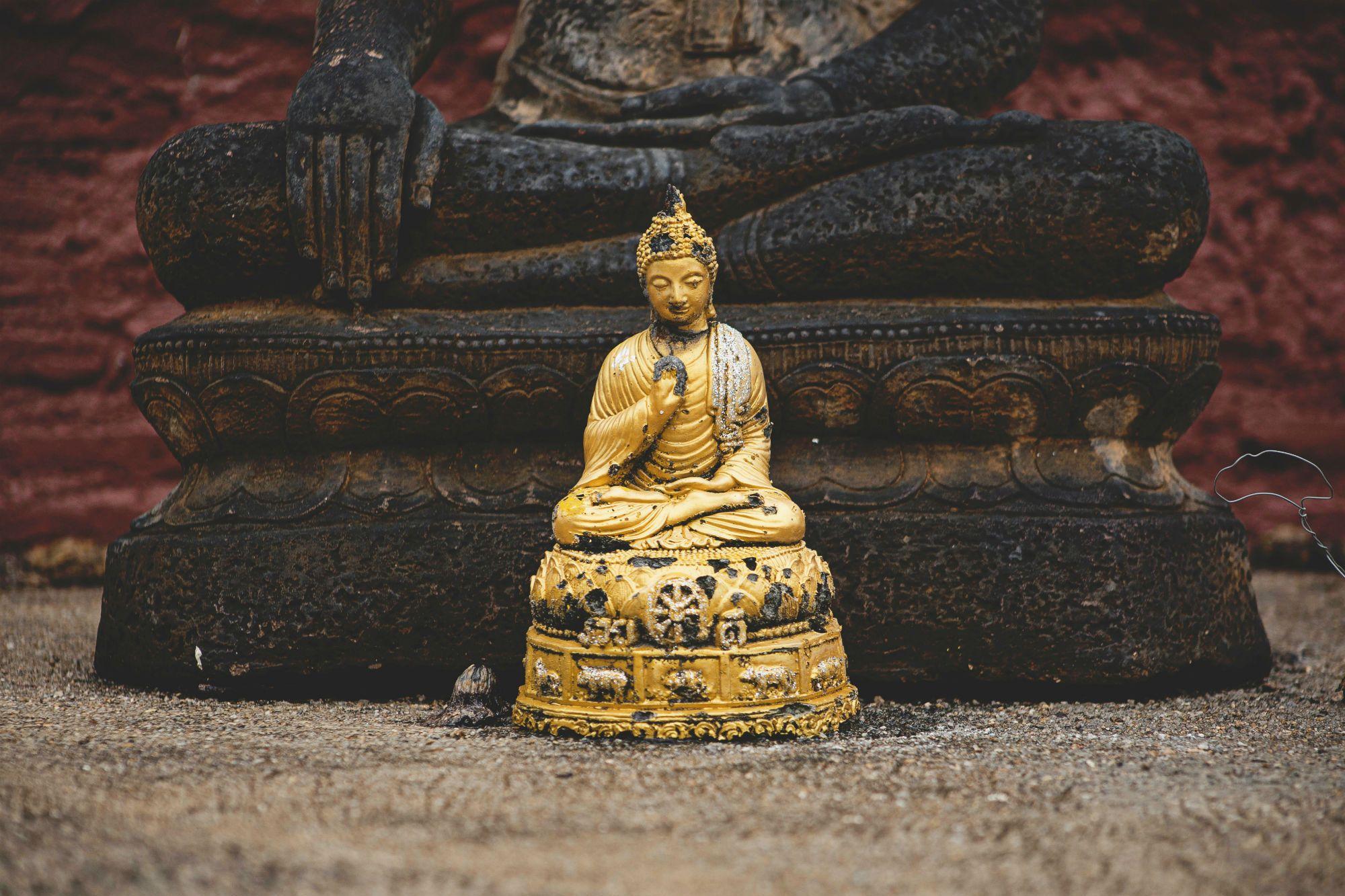 Las 4 acciones budistas del emprendedor persuasivo