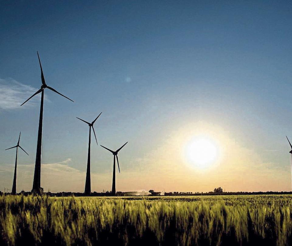 Pandemia no frenó desarrollo de proyectos eólicos y solares. | Economía
