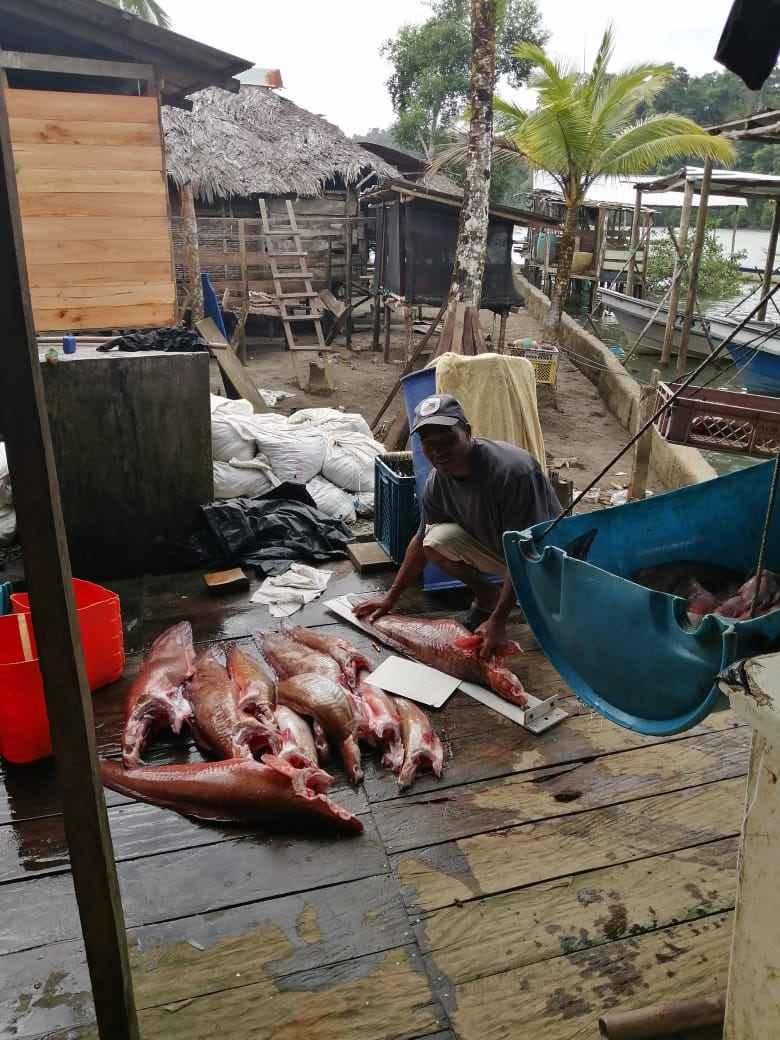 Monitoreo de los recursos hidrobiológicos, acción esencial para la conservación