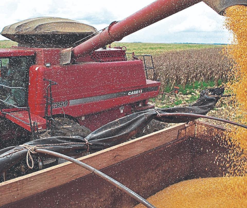 El plan de Duque para el agro, una solución parcial: gremios | Gobierno | Economía