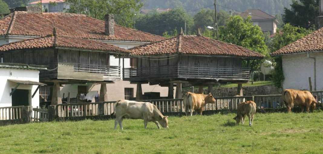 Innovación y tecnología para el desarrollo rural