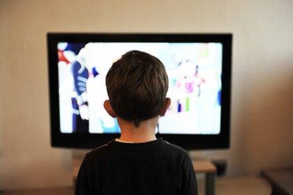 """Conductores de televisión harán """"dueto"""" con los docentes para impartir clases a distancia: SEP (Foto: Pixabay)"""