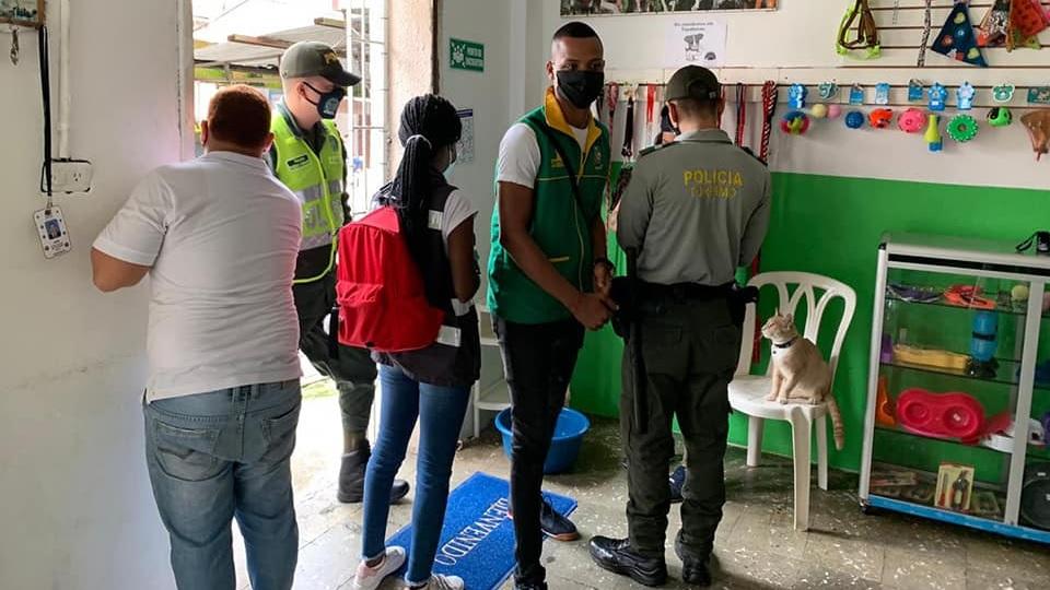 Dos veterinarias cerradas temporalmente por la Secretaría de Salud y Policía Ambiental | Noticias de Buenaventura, Colombia y el Mundo