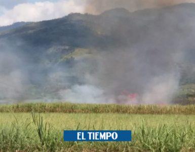 Área para quema de la caña se reduce a más de la mitad en el Valle - Cali - Colombia