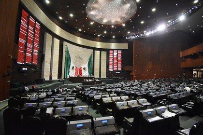 La CNDH y ONU-DH coincidieron en que el dictamen aprobado por la Cámara de Diputados para eliminar el fideicomiso no propone alternativas de garantía presupuestaria  (Foto: Cámara de Diputados/ Cuartoscuro)
