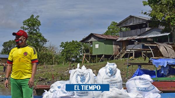 Cómo funciona el Programa Mundial de Alimentos en Colombia 2020 - Gobierno - Política