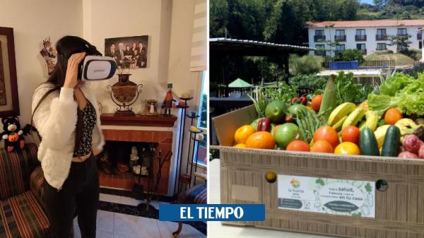 Coronavirus: emprendimientos colombianos que han superado la crisis con tecnología - Novedades Tecnología - Tecnología