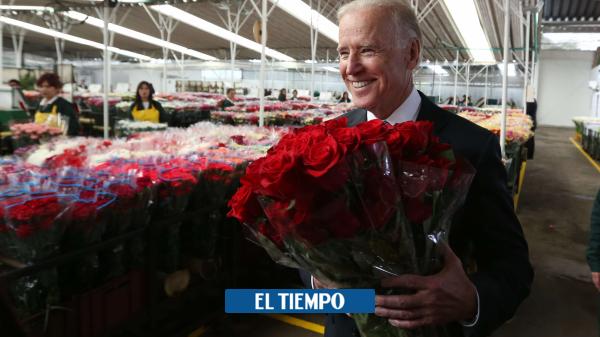 Elecciones en Estados Unidos: Qué dice Joe Biden sobre Colombia - EEUU y Canadá - Internacional