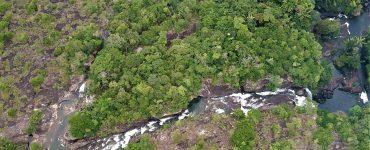"""""""Los dirigentes siguen ignorando el papel ecológico y social de los indígenas"""""""