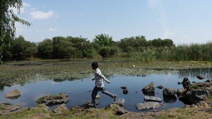 El agua de los manantiales hidalguenses se usaría para abastecer las operaciones del Aeropuerto de Santa Lucía (Foto ilustrativa: Cuartoscuro)