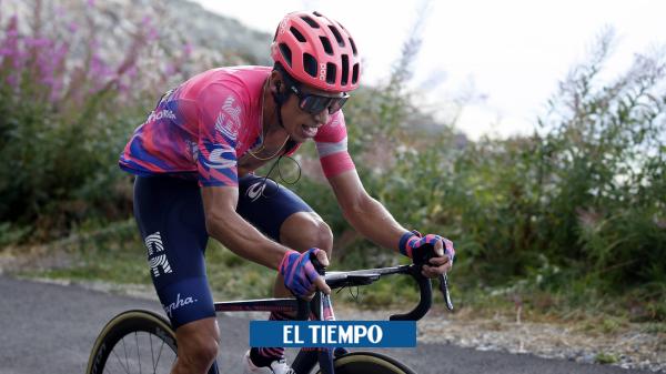 Video Rigoberto Urán hablando con un cisne sobre el Giro de Rigo 2020 - Ciclismo - Deportes