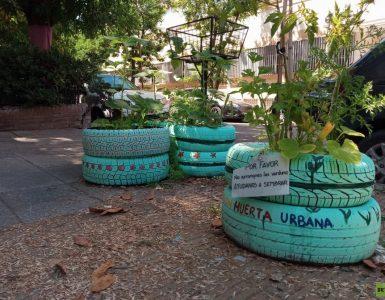 """Cómo las huertas urbanas de Buenos Aires generan soberanía alimentaria sin gastar dinero: """"Es una revolución silenciosa"""" (VIDEO)"""
