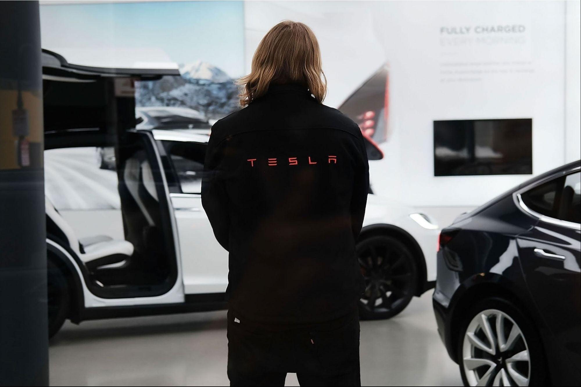 ¡Nada detiene a Tesla! Excepto esta serpiente que retrasó la construcción de su planta en Alemania