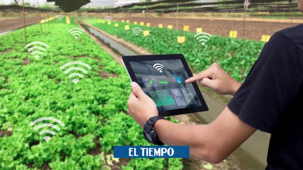 El futuro del sector agropecuario está en las nuevas tecnologías - Novedades Tecnología - Tecnología