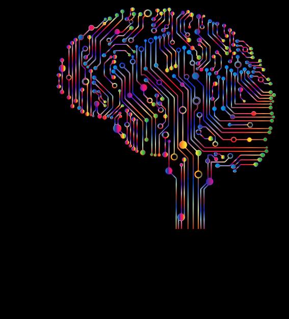 brain-4863428_1280.png
