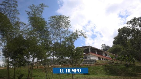 """'No hay escondedero para quienes asesinaron a jóvenes en Buga"""" - Cali - Colombia"""