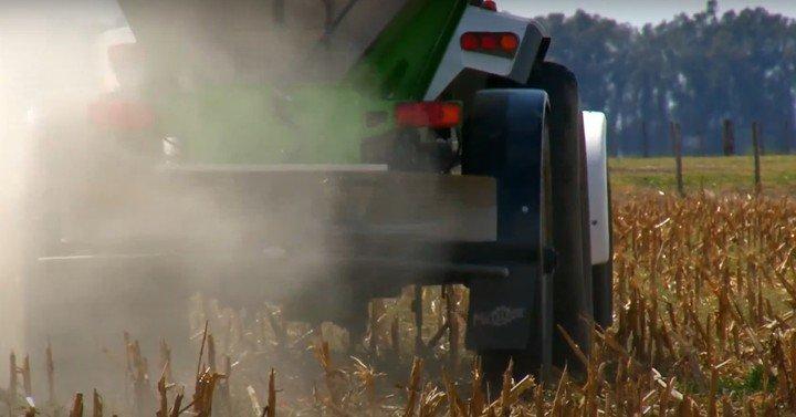 Fertilizando súper fosfato triple, en dosis de 150 kg/ha y al voleo entre 3 y 4 meses antes de la siembra.