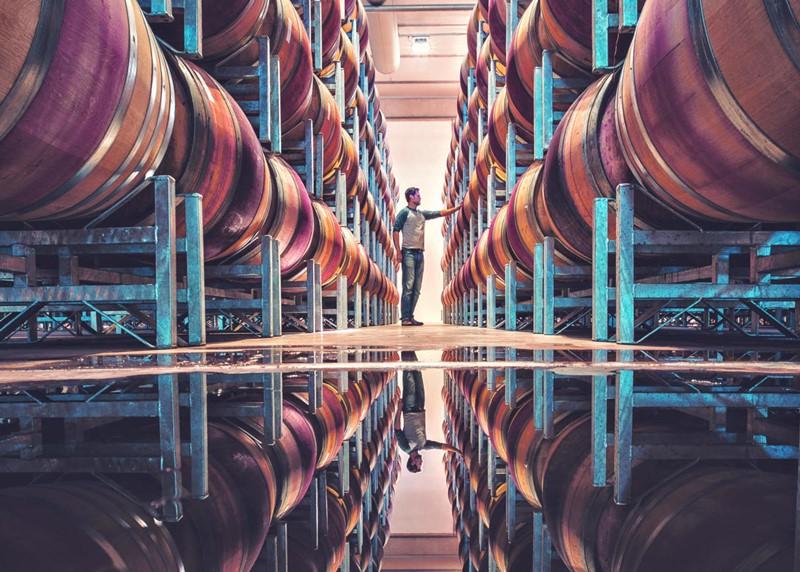 ejemplos de los avances tecnológicos en el sector vitivinícola