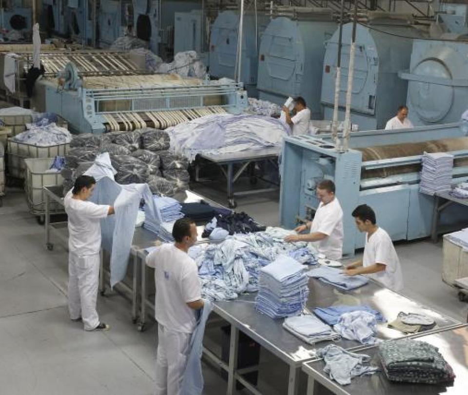 ¿Cuáles son las regiones que más empleo generan en la pandemia? | Economía