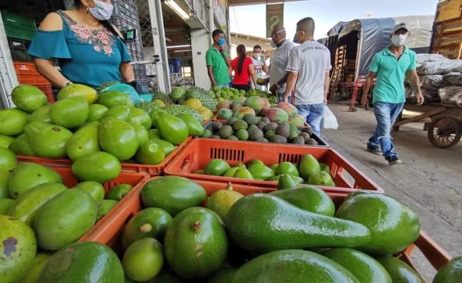 Aguacate y limón lideran las exportaciones del Valle