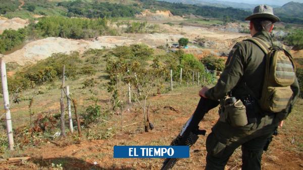 Alarma por hallazgo de hombres asesinados en una carretera en Cauca - Cali - Colombia