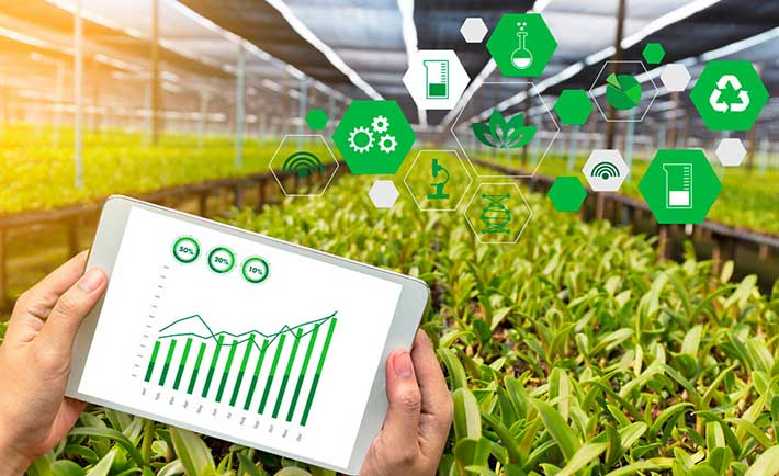El Campo podría tener una mayor productividad con tecnología