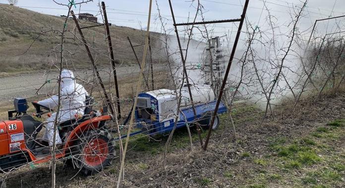 La tecnología WSU protege los cultivos de las heladas