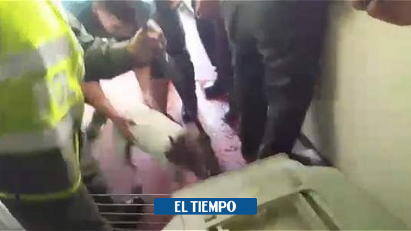 Noticias Cali: Denuncian que perro pitbull murió acuchillado - Cali - Colombia