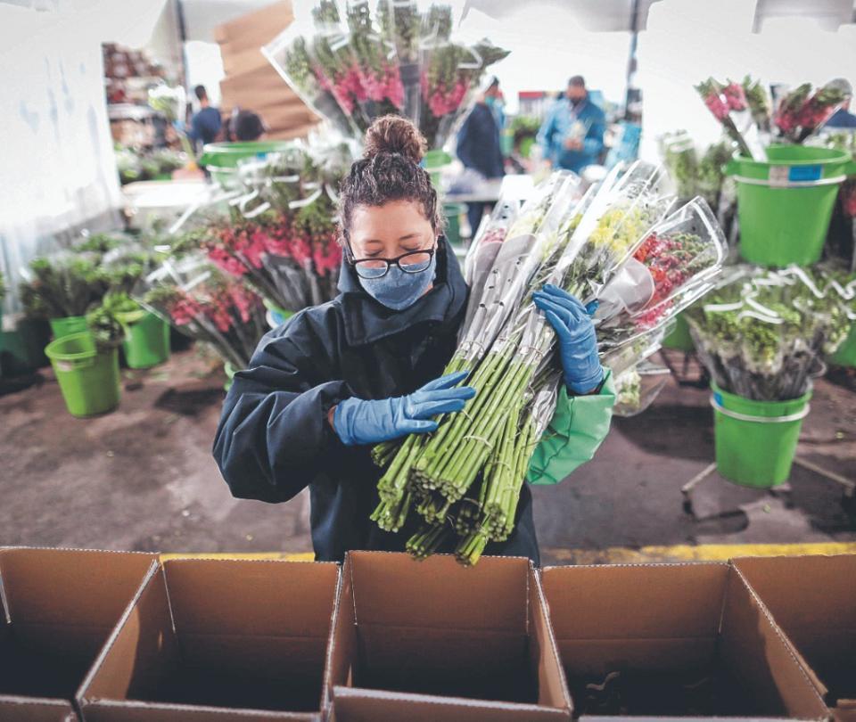 La eficiencia de la agricultura jalonó productividad en 2020 | Economía