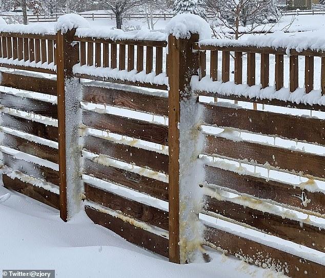 La tormenta invernal Xylia dejó caer casi un metro de nieve en Colorado durante el fin de semana, pero parte del polvo tenía un tono marrón en lugar de completamente blanco.