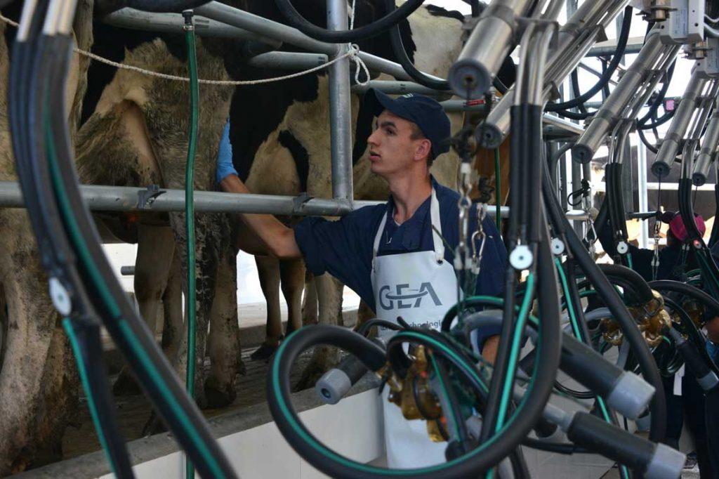 Un siglo aportando conocimiento y tecnología a la industria lechera