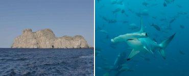 El Santuario de Flora y Fauna Malpelo y el Parque Nacional Natural Uramba en Bahía Málaga vienen siendo apoyados por la Secretaría de Turismo, liderada por funcionarios expertos.