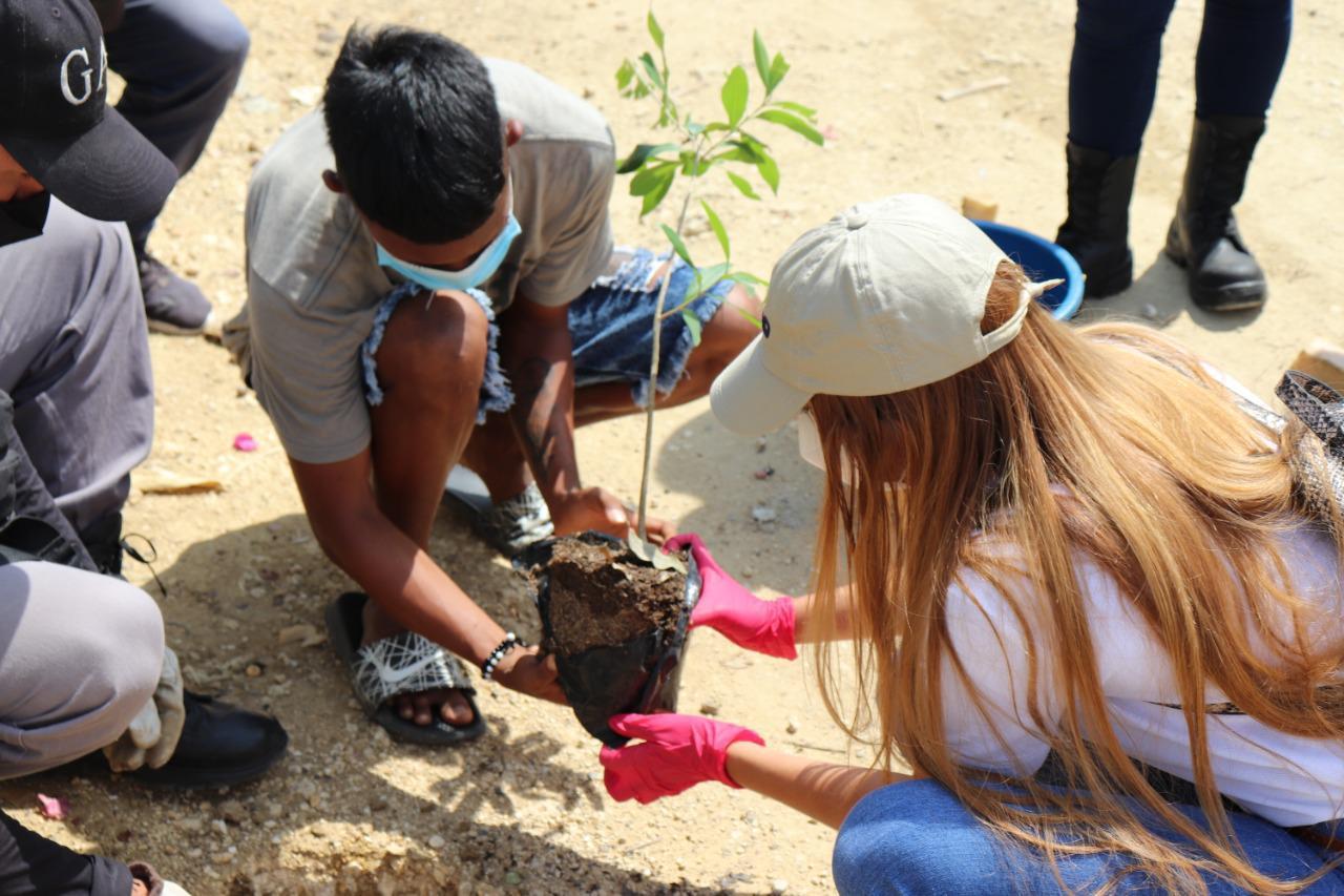 Cardique celebra el Día del Árbol sembrando 2000 especies en la jurisdicción