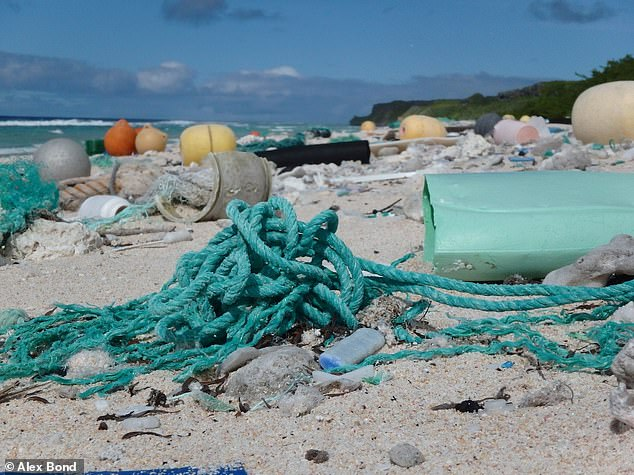 Miles de millones de piezas de plástico han caído en la arena de una remota isla del Pacífico de todo el mundo, a pesar de estar a 3.000 millas del continente más cercano.