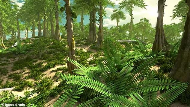 La extinción masiva del Devónico acabó con el 70 por ciento de la vida de nuestro planeta hace unos 360 millones de años, pero la causa del mortal evento sigue siendo un misterio.  Pero un estudio sugiere que fue un nuevo crecimiento forestal en todo el mundo lo que provocó el evento mortal.