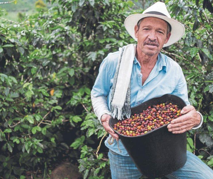 Gremio cafetero de Brasil, presidido por colombiano   Economía