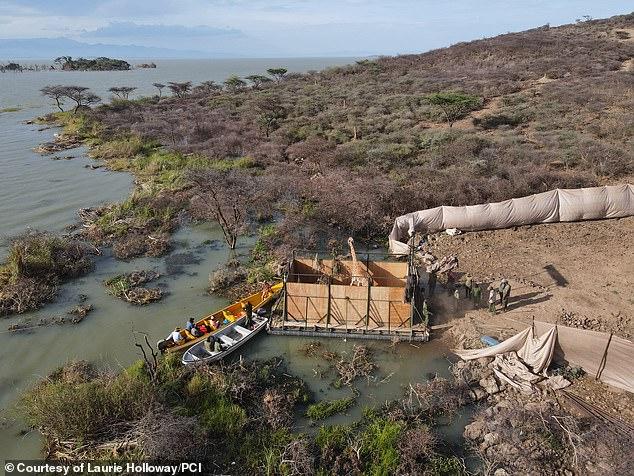 La conservación de la vida silvestre ha estado trabajando contra el tiempo para rescatar a nueve jirafas en peligro de extinción varadas en una isla de Kenia que se inundó y sus esfuerzos han dado sus frutos, ya que las dos últimas han sido llevadas a la costa.
