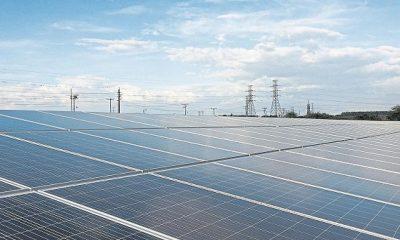 'Luz verde' a tercera subasta de renovables para octubre | Economía